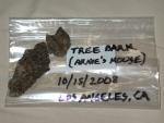 Tree Bark from Arnies House.jpg